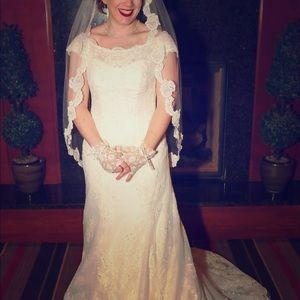 Wedding dress and veil